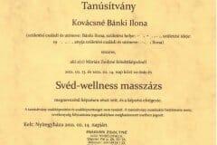Sved-wellness-masszazs-tanfolyam-4